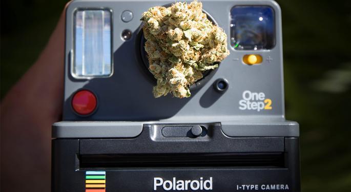 Leveraging Instagram To Build Cannabis Businesses