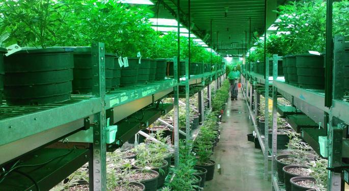 Cannabis ETF Isn't High Yet, But It's Rebounding