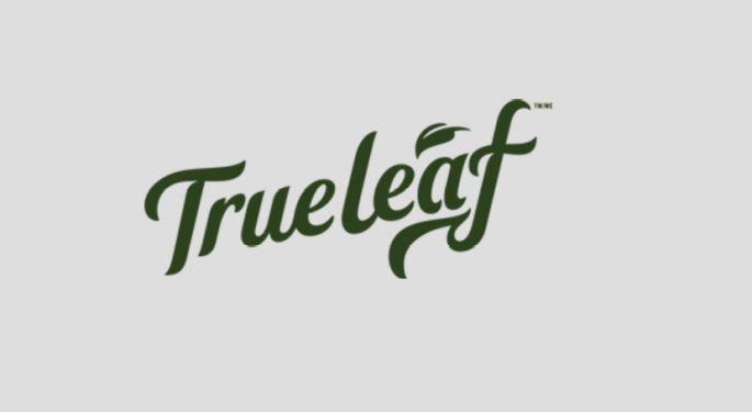 Former TUMI Executive Mike Mardy Appointed To True Leaf's Board