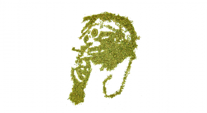 All About Wiz Khalifa's Many, Many Cannabis Ventures