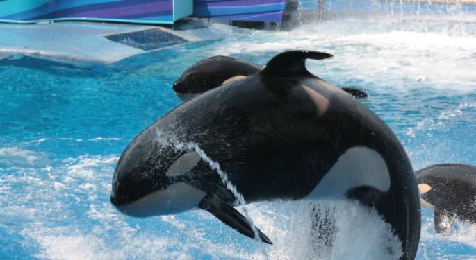 What To Expect From SeaWorld's Expansion Into Abu Dhabi
