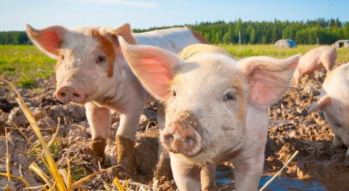 Pig Farmer Mr. Womack Always Found Success In The Markets...The Reason Why May Surprise You