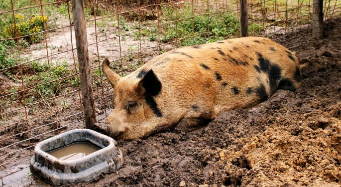 Florence Adds Volatility To Lean Hog Prices