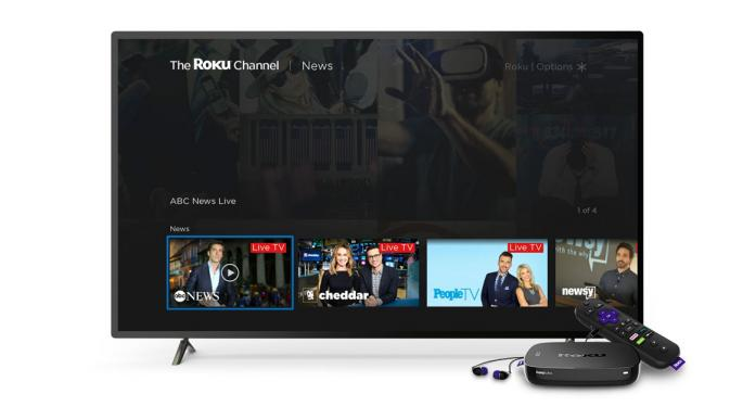 Roku Is A Streaming Leader With Shares 'Priced To Perfection,' Wedbush Says In Initiation