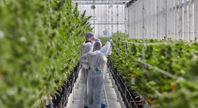 Tilray Posts Wider-Than-Expected Q2 Loss, Revenue Beat