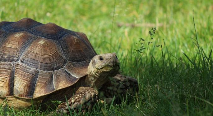 Investing For Retirement? Be The Turtle, Not The Hare