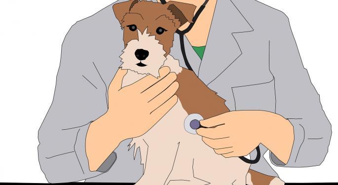 Trupanion Has Large Opportunity In Growing $1B Pet Insurance Market, Raymond James Says In Bullish Initiation