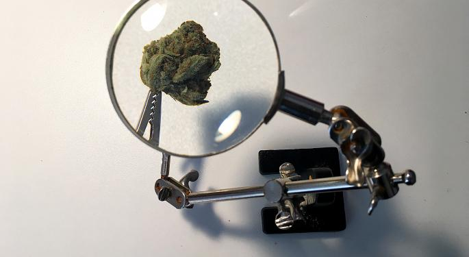 Investing In Marijuana: Cannabis Industry Raises Hit $1.8 Billion, Up 150% Year Over Year