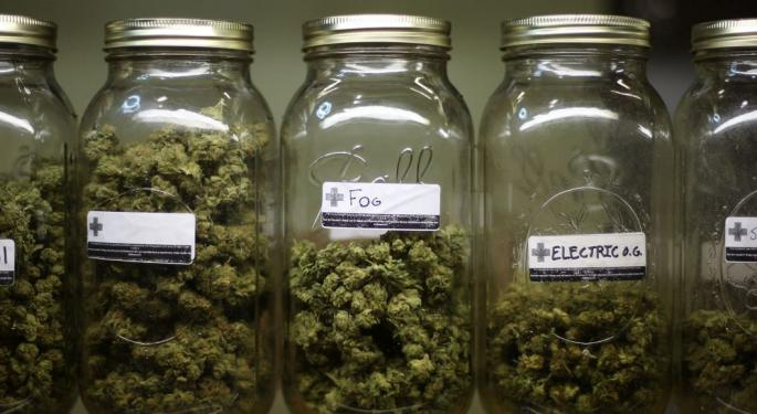 How Medicare For All Could Dramatically Boost Access To Medical Marijuana