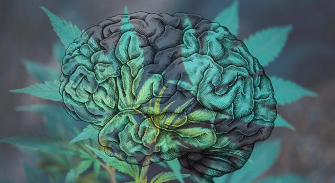 Your Brain On Weed: Concussions And Cannabis