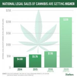 marijuana-sales-growth-300x300.jpg